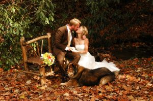 autumn-wedding