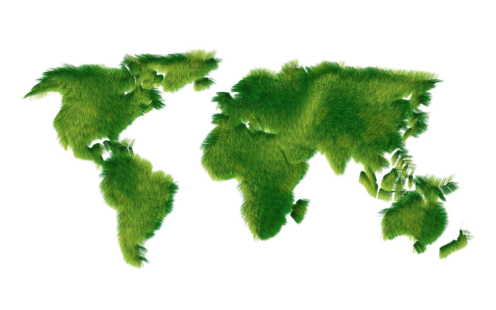 Green Peace | Mydreamwall's Blog
