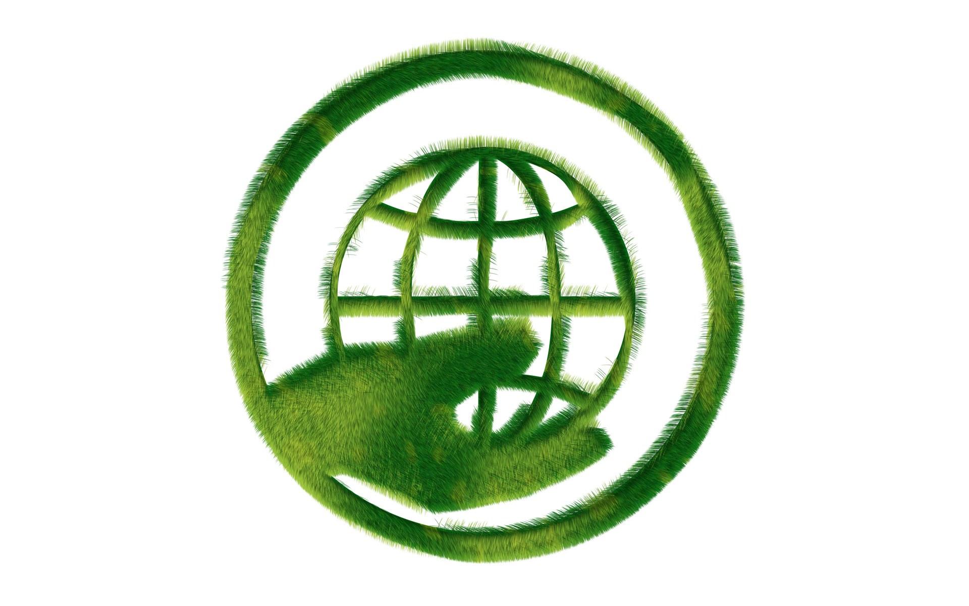 Green Peace | Mydreamwall's Blog Greenpeace
